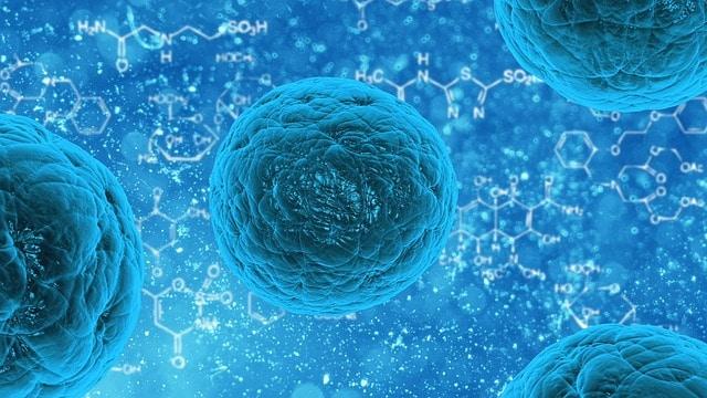 Terapi Stem Cell dan Keberadaannya di Indonesia